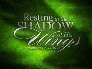Resting in the shadow of his wings