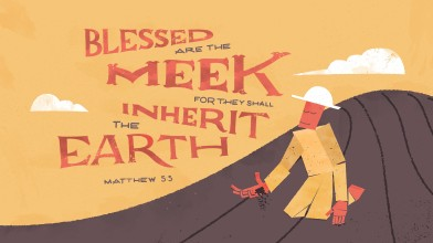 Matthew 55 [widescreen]