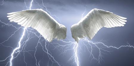 42825924 - angel wings with background made of sky and lightning.