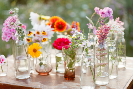 51261850 - nice flowers in the bottles